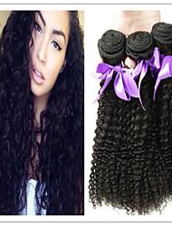 3pcs / lot onbewerkte Mongoolse kinky krullend haar weave goedkope virgin hair