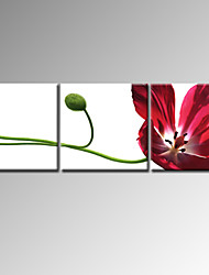 VISUAL STAR®High Quality Flower Canvas Painting For Decor  Ready To Hang