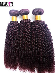"""3Pcs/Lot 10""""-26"""" Brazilian Kinky Curly Virgin Hair Burgundy Pure Color Remy Human Hair Extensions Queen Hair Products"""