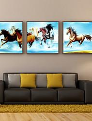 cheval de pentium gravures affiche de vendre la maison moderne de peinture à l'huile murale impression sur toile 3pcs / set (sans cadre)