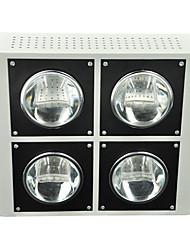 morsen® 120w 12000lm cob groeien lampen voor de bloeiende plant en hydrocultuur systeem (usa stekker)