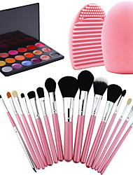 15pcs pro cosmétique maquillage Brush Set lipbrush supérieure rouges à lèvres molles + magnifiques brillant à lèvres + brosse de lavage