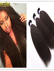 3 Pcs/Lot Sale Kinky Straight Weft 3Pcs lot Grade 8a Unprocessed Virgin Human Hair Weave Good Quality Hair Extension