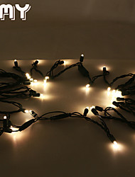 GMY Christmas Light  LED 5MM Waterproof String Light
