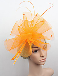 Women's Feather/Net Headpiece - Wedding/Special Occasion Flowers 1 Piece