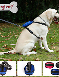 Reflective Nylon Dog Pet Traction Suit for Dog