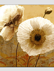 Oil Paintings Flower Style , Canvas Material, Painting Only SIZE:60*60CM.