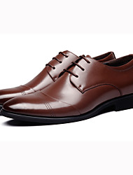 Men's Oxfords Spring Summer Fall Winter Formal Shoes Leather Outdoor Office & Career Flat Heel Black Brown