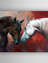 Oil Painting Two Horses Hand Painted Canvas with Stretched Framed Ready to Hang