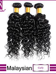 "8""-30"" Black Malaysian  Curly Hair Weave 3Pcs/Lot 100% Unprocessed Malaysian Virgin Curly Hair"