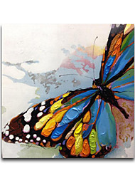 IARTS®Beautiful Colorfl Knife Butterfly Animal Oil Painting Stretched Designs Whosale Price in the end of 2015