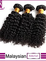 """8 """"-30"""" 3pcs de tissage de friser les cheveux crépus / lot 100% non transformés crépus vierge malaisien friser les cheveux de Malaisie"""