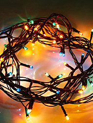 Christmas decoration lights Fruit light