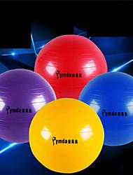 Ymda Unisex Fitness Ball PVC 0.65 M Yellow / Red / Blue / Purple