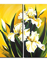 2 Panels White Lilium brownii  Floral Oil Painting Framed White Flower Oil Painting