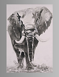 Elephant  Wall Art Canvas Print Ready To Hang 80*120cm