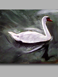 White Swan Oil Painting Iarts Brand High Quality Wall Art