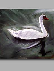 Белый лебедь маслом iarts бренда высокого качества стены искусства