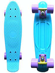 Patinete Azul Unissex Adulto