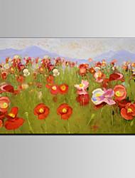 красный цвет цветка DIY рамка iarts бренд стены искусства