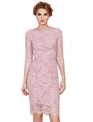 Women's Vintage/Sexy/Casual/Lace/Party Micro-elastic Long Sleeve Knee-length Dress (Lace)