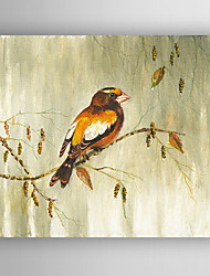 Oil Painting a Bird in the Tree  Hand Painted Canvas with Stretched Framed Ready to Hang