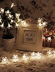 roi ro 40led batterie légère fleur de vacances en plein air lumière chaîne imperméable à l'eau (kl0018-rgb, blanc, blanc chaud)