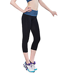 Women's Striped Fitness Sport Gym Pants Leggings Tights