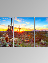 VISUAL STAR®3 Panel Landscape Canvas Print Mountain Sunrise Wall Art Ready to Hang