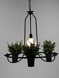 Mediterranean Garden flowers Light