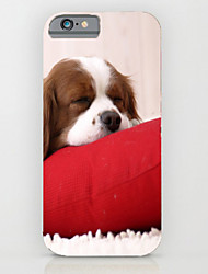 Tiger Cats and Dogs Pattern PC Phone Case Hard Back Case Cover for iPhone5/5S