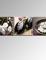 VISUAL STAR®3 Panel Zen Flower Canvas Prints Home Decor Spa Stone Canvas Wall Art Ready to Hang