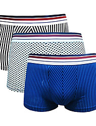 Am Right Hommes Coton / Elasthanne Boxer Short 3 / boîte-AWH010