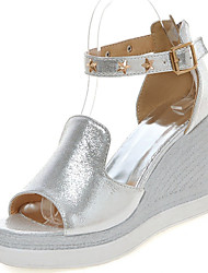 Women's Shoes Wedge Heel Wedges / Open Toe Sandals Dress Silver / Gold