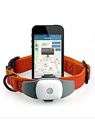 Gatos / Perros Los collares GPS A Prueba de Agua / Pilas incluidas / GPS Verde / Azul / Rosado / Amarillo Plástico