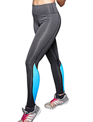 Running Pants/Trousers/Overtrousers / Tights / Leggings / Bottoms Women'sBreathable / High Breathability (>15,001g) / Quick Dry / Thermal