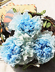 Six Gradient Blue Carnation Flowers/Box Preserved Fresh Flowers