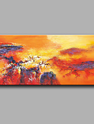 Oil painting Modern Abstract Pure Hand Draw Frameless Decorative Painting