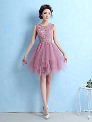 A-Line Jewel Neck Short / Mini Lace Tulle Cocktail Party Homecoming Prom Dress with Lace