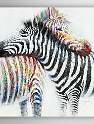 pintura a óleo pintado animais dois zebra juntamente com esticada quadro 7 arts® parede da mão