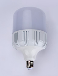 20W-LED GLOBE BULBS