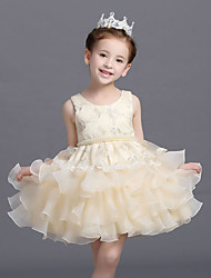 Ball Gown Short / Mini Flower Girl Dress - Organza Sleeveless Jewel with Sash / Ribbon
