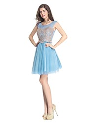 Cocktail Party Dress A-line Scoop Short / Mini Tulle with Appliques / Lace
