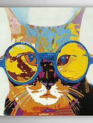Hand Painted Oil Painting Animal Pet With Glasses with Stretched Frame 7 Wall Arts®