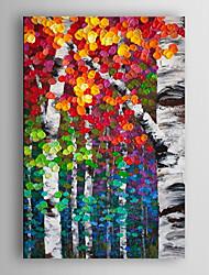 pintura al óleo pintada a mano del paisaje de color abstracta del árbol ful con el marco estirado Arts® 7 de pared