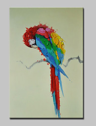 pintados à mão pintura a óleo abstrata do papagaio animais moderna sobre a arte da parede da lona, com quadro esticado pronto para pendurar