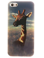 Para Capinha iPhone 5 IMD Capinha Capa Traseira Capinha Animal Macia TPU Apple iPhone SE/5s/5