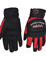MS001 Motorcycle Riding Gloves, Motorcycle Racing Waterproof Warm Gloves