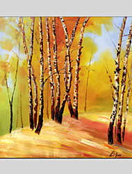 Oil Paintings Modern Landscape , Canvas Material with Stretched Frame Ready To Hang SIZE:70*70CM.