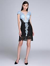 2017 ts couture® Cocktailpartykleid Mantel / Spalte scoop kurz / Mini-Spitze mit Spitze